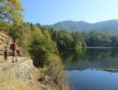 Who says there are no fall colors in the Bay Area? Here are few hikes for hue to do!