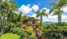 Take a serious Hawaiian vacation on Oahu, Kauai, Maui, or the Big Island with Hawaii Life, the premier Hawaii real estate and Hawaii vacation rental company. Hawaii Vacation Rentals, Vacation Resorts, Best Vacations, Kauai Beach Villas, Myrtle Beach Resorts, Best Beaches In Maui, Hawaii Life, Beautiful Villas, Beach Cottages