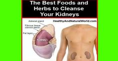The Best Foods and Herbs to Cleanse Your Kidneys
