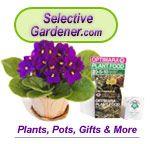 Shop Online: African Violets, Orchids, House-Plants, Gifts, Ceramic/Plastic Pots & more! Amazon Rewards, Ceramic Pots, Plastic Pots, Self Watering, Water Flowers, Violets, Plant Care, Plant Decor, Houseplants