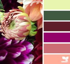 Flora Palette - http://design-seeds.com/index.php/home/entry/flora-palette12