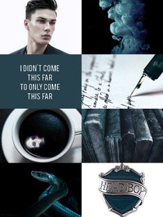Tom Marvolo Riddle / Lord Voldemort