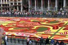 Corpus Christi Festival Flower Carpet Competition - The Annual Floral Carpet Competition - you have to see it to believe it, the detail is amazing.