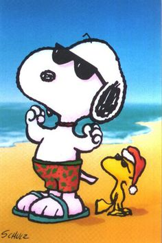 "Snoopy as ""Joe Cool"" and Woodstock. Snoopy Cartoon, Peanuts Cartoon, Peanuts Snoopy, Peanuts Movie, Peanuts Comics, Snoopy Christmas, Charlie Brown Christmas, Summer Christmas, Merry Christmas"