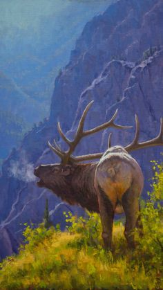 Nature Paintings, Animal Paintings, Nature Oil Painting, Acrylic Landscape Painting, Wildlife Paintings, Mountain Paintings, Art Nature, Oil Paintings, Mountain Landscape