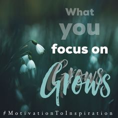 It's no small secret that what we focus on grows but sometimes it's important for us to have that reminder. We get so caught up in the ...