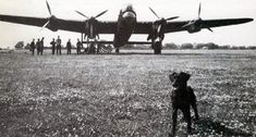 Old What's-His-Name may have been a Lab, but he was a dinky one for certain. Here the curious little lad comes close to the camera while 617 Squadron crews, by their Lancaster, await a mission. Nigger was portrayed in the 1955 film, The Dam Busters. He was mentioned by name frequently in the film.
