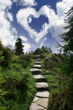 Every step I take is a Blessing .  ~Rumi