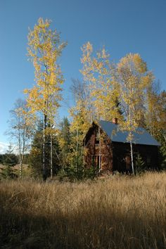 http://freecabinporn.com/post/37344401319/cabin-in-northern-idaho-usa-perfect-submitted