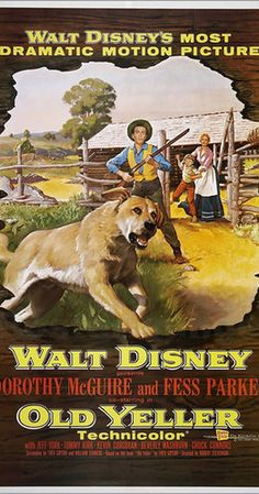 Directed by Robert Stevenson.  With Dorothy McGuire, Fess Parker, Tommy Kirk, Jeff York. A teenage boy grows to love a stray yellow dog while helping his mother and younger brother run their Texas homestead while their father is away on a cattle drive. First thought to be good-for-nothing mutt, Old Yeller is soon beloved by all.