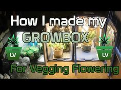 How I made my Grow Box for Vegging and Flowering :) LV - YouTube