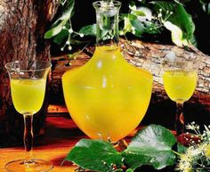 Przepis Na Nalewki Ze Spirytusu - myTaste.pl Irish Cream, Hurricane Glass, Raw Vegan, Liquor, Alcoholic Drinks, Vogue, Homemade, Wine, Cooking