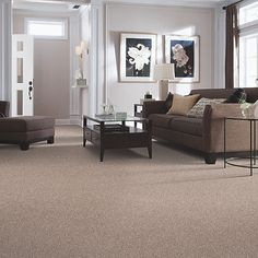 Pinewalk  50 Colors available  SmartStrand