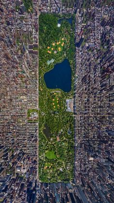 Urban architecture at its finest. Central Park by Frederick Law Olmsted. Relates well to walkabilityand connectivity