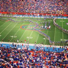 Will hopefully be a Gator once again at the University of Florida! Florida Girl, Old Florida, Vintage Florida, College Fun, College Football, College Sport, Florida Gators Football, Gator Football, Gator Game