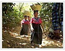 Women with baskets of coffee