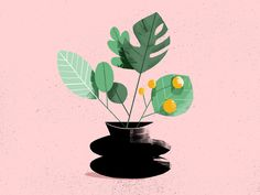 plants forever and ever. by sarah beth hulver