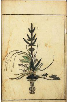Botanical - Floral Design - Ikebana vol 1 arrangement  (2)