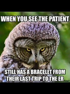 Those patients that know every nurse in every ER within 100 miles of you Like and tag your friends who would love it like you because it is free Rn Humor, Medical Humor, Nurse Humor, Paramedic Humor, Radiology Humor, Psych Nurse, Funny Medical, Hospital Humor, Nurse Problems