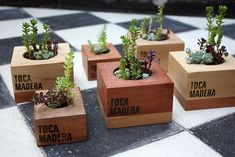 Succulent is a type of plants that doesn't need a lot of treatment. They can grow anywhere with minimum water, including the wood succulent planter. Here are 20 ideas of cute and vintage succulent planter. Wooden Planter Boxes, Cedar Planters, Planter Pots, Planter Ideas, Plant Wedding Favors, Plant Box, Cactus Decor, Garden In The Woods, Succulents Diy
