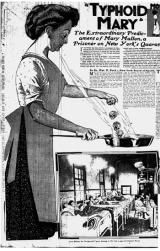 The Sad Story of a Woman Responsible for Several Typhoid Outbreaks: An illustration of Typhoid Mary that appeared in 1909 in The New York American.
