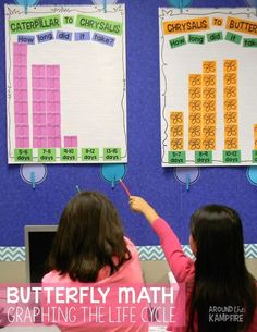 Butterfly Math- Graphing the life cycle~See how we integrated data, graphing and measurement while raising butterflies. Be sure to download the FREE butterfly math page in the post.