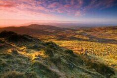 County Tyrone Ireland ... where my family on my dads side os from. The bog of Allen.