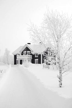Snow Covering...