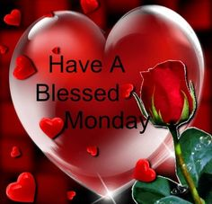 Good morning. Have a Blessed Monday. God has an amazing week waiting for you!