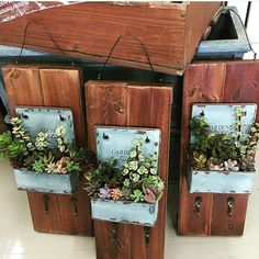 Temperature Regulation for Indoor Plants Succulents In Containers, Planting Succulents, Tin Can Crafts, Diy And Crafts, Wooden Planters, Planter Pots, Arte Pallet, Recycled Garden Art, Succulent Gifts