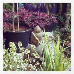 Garden / zen source Instagram/cecilekdjian