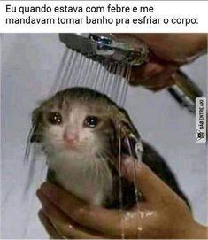 Tom Holland, Memes Status, Dankest Memes, Zendaya, Haha Funny, Funny Cats, Funny Jokes, Toms, Spanish Memes