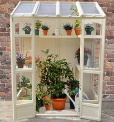 The Victorian Tall Wall Greenhouse from Forest is a compact and attractive lean-to style greenhouse that is perfect for smaller gardens where space is at a premium, or for anyone who does not need a full size greenhouse taking up space in their garden. The greenhouse can be placed against a wall or fence and includes two tiers of shelving, the central sections of which can be dropped down to allow space for taller plants, which is especially useful for overwintering taller tender potted…
