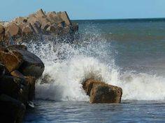 Mar Patagonico