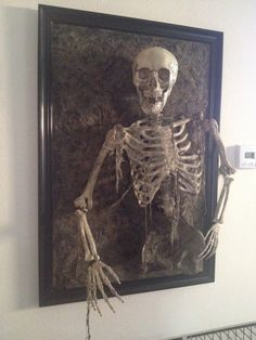 Skeleton coming out of frame. Walgreens skeleton, michaels poster frame, and monster mud.