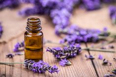 Tips For Cleaning with Lavender Oil