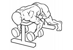 There are many body building exercises out there, one only needs to visit the local gym or fitness center and look at all the different varieties of exercises being done. Dumbbell Shoulder, Shoulder Exercises, Weight Training Workouts, Fun Workouts, At Home Workouts, Core Workouts, Training Exercises, Shoulder Mass Workout, Bodybuilding