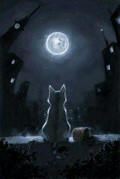 Tonight and Friday, let's do MOON ART. Warrior Cats, I Love Cats, Crazy Cats, Cute Cats, Fantasy Kunst, Fantasy Art, Moon Art, Moon Moon, Cats And Kittens