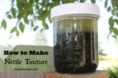 How to Make Nettle Tincture  Nettle is a nutrient-dense herb, rich in easily-assimilated vitamins A, C, D and K, as well as calcium, potassium, phosphorous, iron and sulfur.