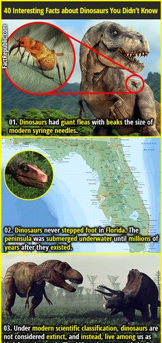 40 Dino Facts - Everything You Need To Know About Dinosaurs | Fact Republic