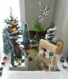 Nature Table on top of a mirror, looks like an icey pond for a Winter scene!