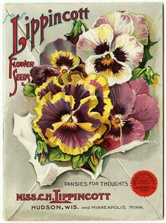vintage pansy catalog art