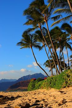 Leeward Shore, Oahu, Hawaii