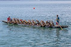 Practicing Dragon Boat Racing, Wellington, NZ