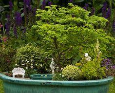 A pond in a pot: building a miniature garden