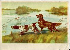 Dogs, Vintage Postcard Russian Soviet, Illustration Kurdov unused 1958 by LucyMarket on Etsy