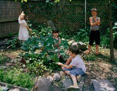 Edible Gardens LA builds, plants and sustains organic vegetable gardens. Lauri Kranz teaches gardening at local schools and with her company Edible Gardens LA, helps chefs, families and anyone with an.