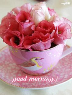 472 best Good Morning Gif photos by sonusunariya Cute Good Morning Quotes, Good Morning Cards, Good Morning Coffee, Good Morning Flowers, Good Morning Good Night, Good Morning Wishes, Greetings For The Day, Weekend Greetings, Good Morning Greetings