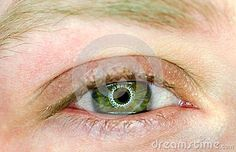 Photo about Beautiful green eye looking straight macro. Image of pupil, blink, creepy - 108496871 Beautiful Green Eyes, Image