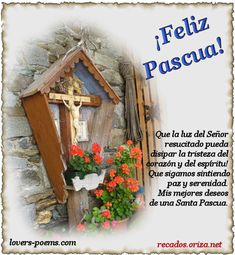 Photo by Oriza Martins Happy Easter, Easter Bunny, Love You Gif, Bible Verses About Faith, House Blessing, Grandma Quotes, Easter Wishes, Celebration Quotes, God First